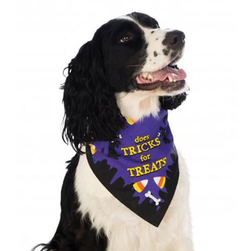 Rubie's Tricks for Treats Halloween Dog Bandana