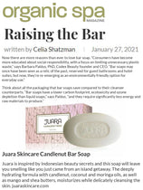 ORGANIC SPA MAGAZINE : Raising the Bar