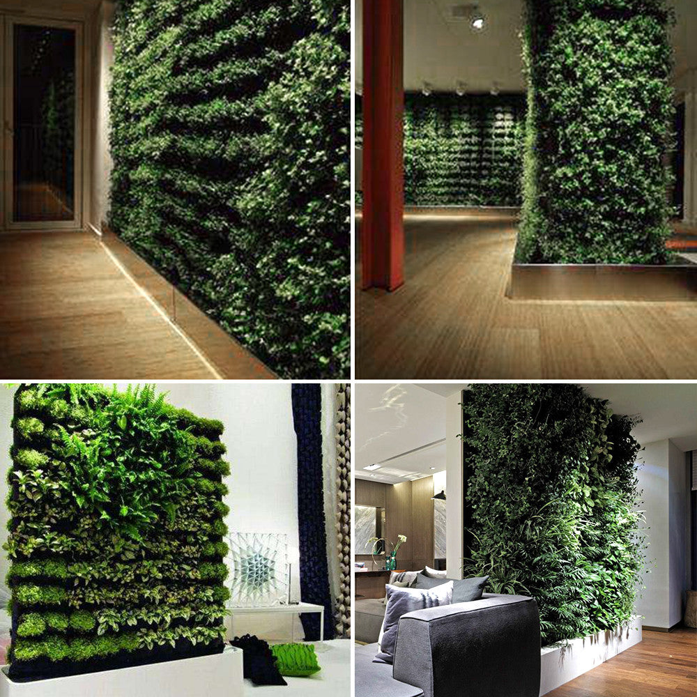 Wild Atlantic Garden Vertical Garden Gardening Supplies Ireland Feature Wall Design Inspiration