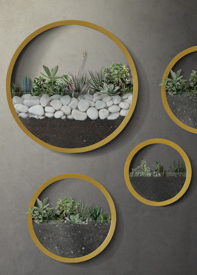 Wild Atlantic Garden Wall Vase Circle Wall Planter Vertical Gardening