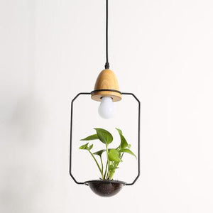 Wild Atlantic Garden Indoor Vertical Garden Plant Lamp Hanging Planter Ireland