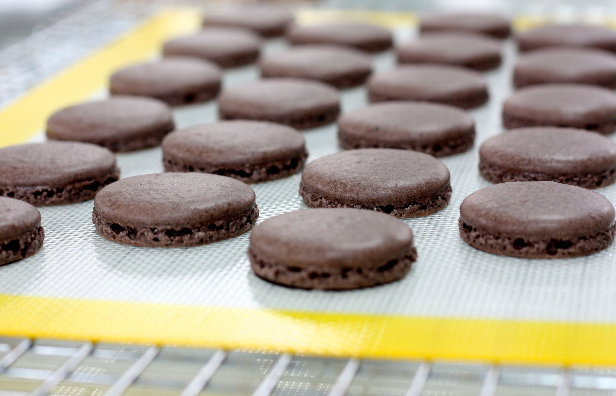Chocolate-Covered Caramel Pecan Macarons