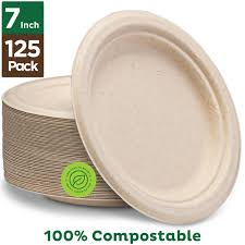 Biodegradable Plate 7 inches - Sherza Allstore