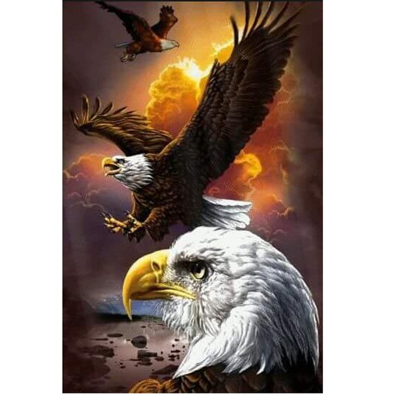 American Soaring Eagle Diamond Painting Kit