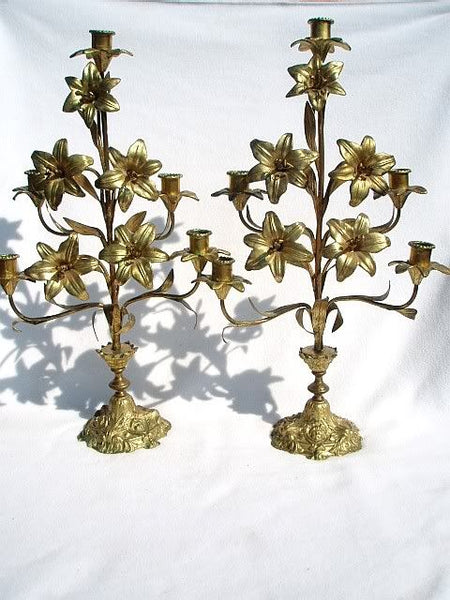 French Bronze Ormolu Candelabra Pair
