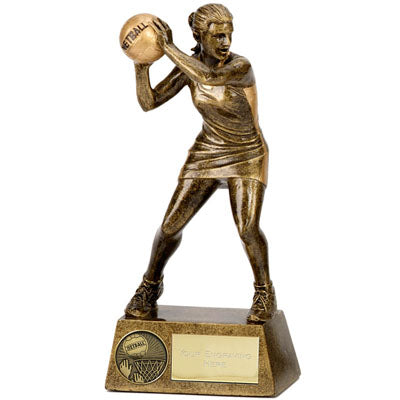 Pinnacle Action Netball Trophy