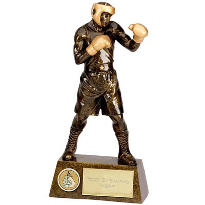 Pinnacle 3D Boxing Action Trophy