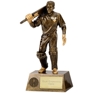 Pinnacle Cricket Batsman Trophy