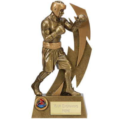 Gold Flash Boxing Trophy