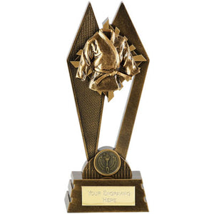 Peak Gold Martial Arts Suit Trophy
