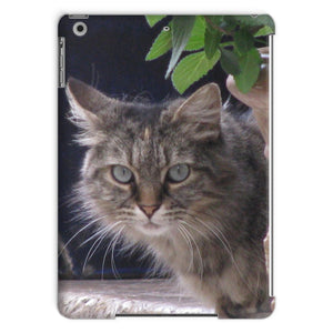 Cat South of France - Tablet Case - Art Beauty Fashion
