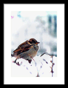 Angry Bird - Framed Print - Art Beauty Fashion
