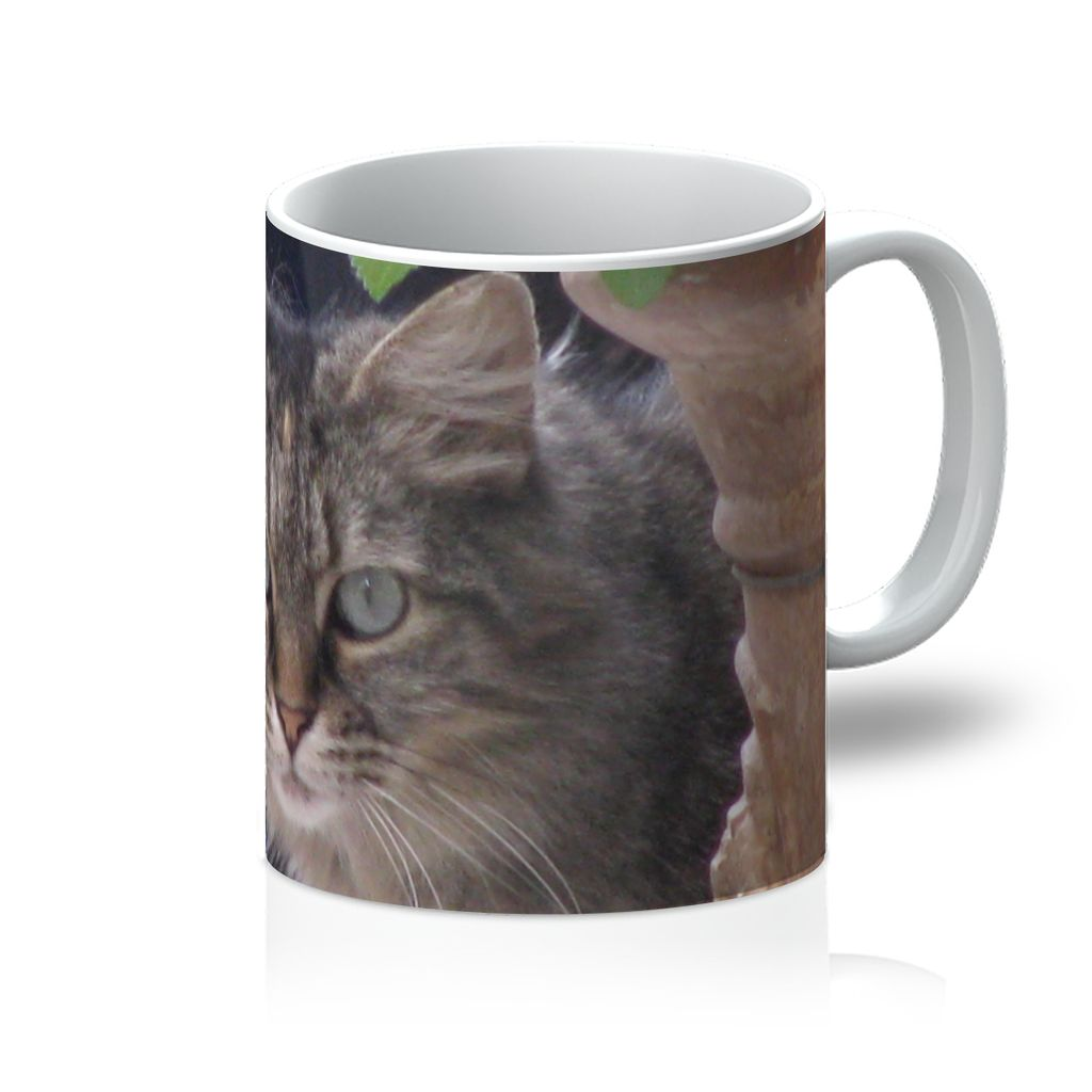 Beautiful Cat Mug with a sweet cat to make hearts melt - Art Beauty Fashion