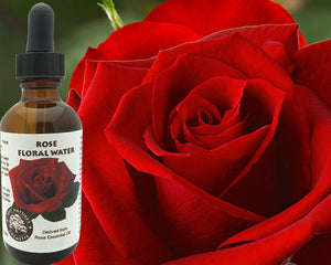 Rose Floral Water (Hydroflorate or Hydrosol) for - Art Beauty Fashion