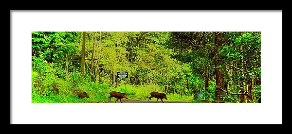 Jungle Wild Bores - Framed Print - Art Beauty Fashion