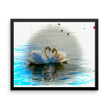 Swan Love - Framed photo paper poster - Art Beauty Fashion