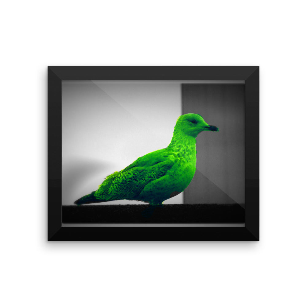 Green Seagull - Framed photo paper poster - Art Beauty Fashion