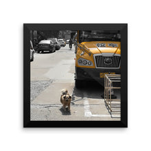 Chinese Shanghai City Dog in front of a bus - Stylish Framed photo paper poster to hang - Art Beauty Fashion