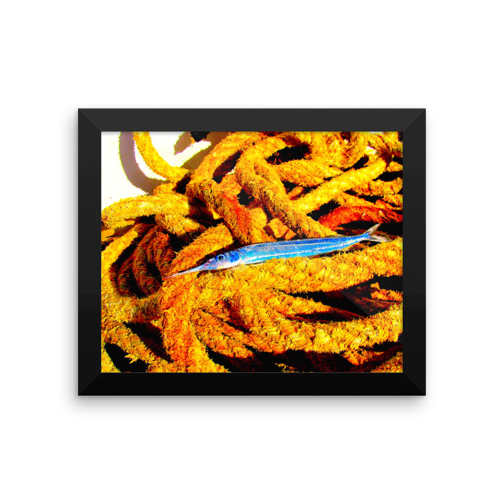 Red Sea Fish - Framed photo paper poster - Art Beauty Fashion