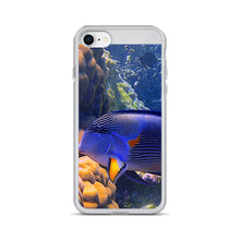 Coloured Fish Study - iPhone Case - Art Beauty Fashion