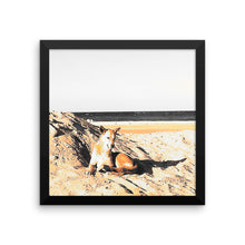 Beach Dog - Framed photo paper poster - Art Beauty Fashion