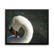 Swan Beauty - Framed photo paper poster - Art Beauty Fashion