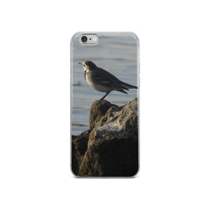 Ocean Bird - Thinker - Style Study - iPhone Case - Art Beauty Fashion