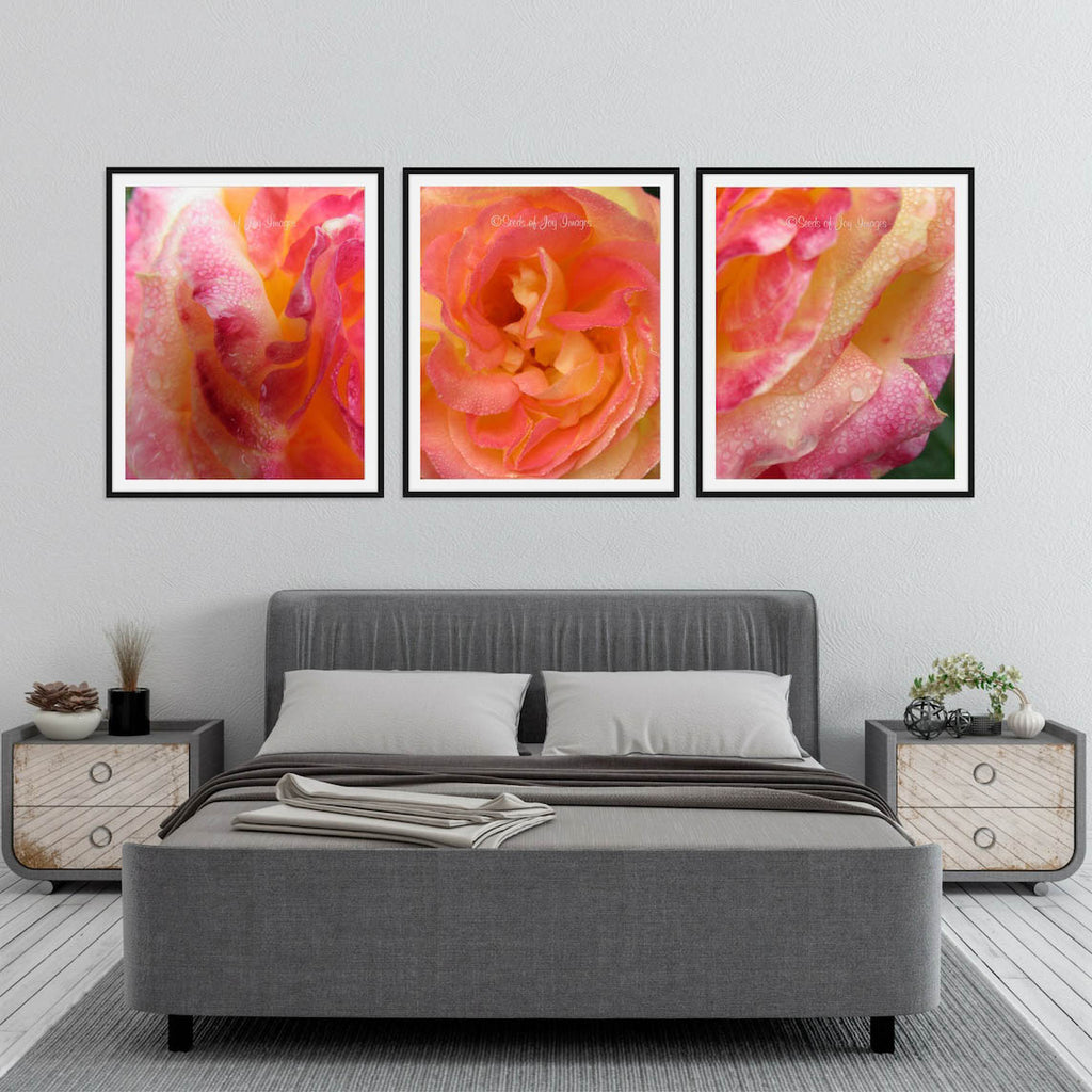 Beauty Reigns - Set of 3 - 10% Off Fine Art Prints
