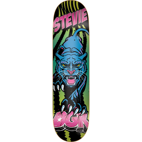 DGK WILLIAMS BLACK LIGHT Deck 8.06