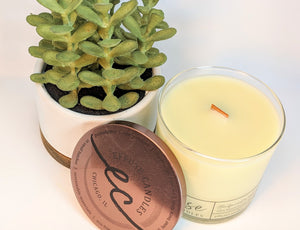 Wood wick candle and plant