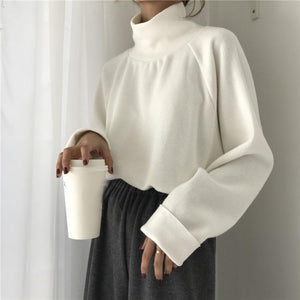 Casual High Collar Solid Color Raglan Sleeve Long Sleeve Sweater