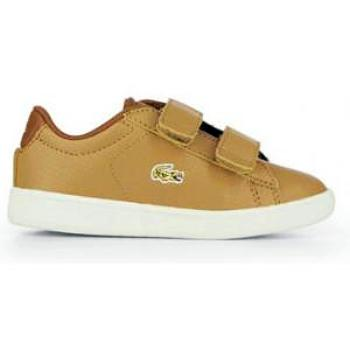 Lacoste Infants CARNABY EVO Trainers Sneaker - Oboapparel Egypt