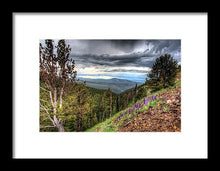 Wild Flowers In Yellowstone  - Framed Print