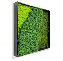 Green Wall, 'Wave Texture'
