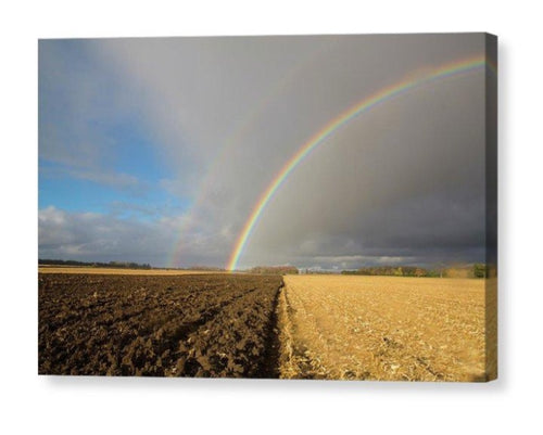 Rainbow Over Farm Field - Canvas Print