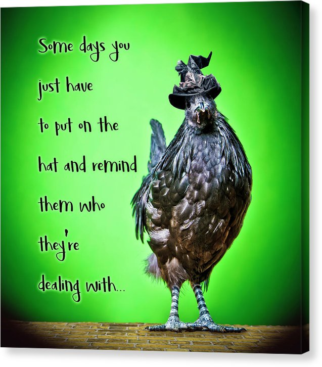 Chicken Wall Art- Some Days  - Canvas Print