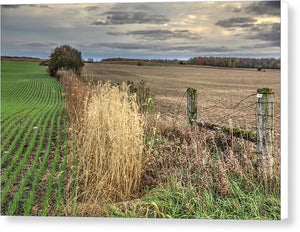Farm Scene  - Canvas Print