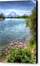 Oxbow Bend - Canvas Print