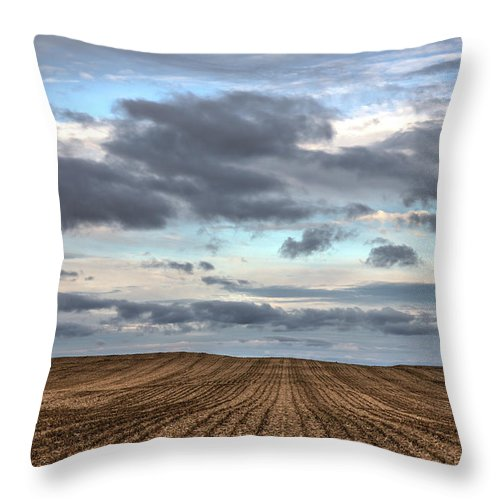 Rows Of Cut Corn - Throw Pillow