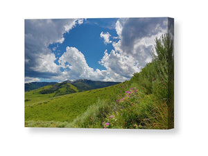 Yellowstone Landscape  With Clouds - Canvas Print