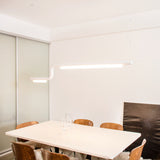 Pipeline CM2 Pendant Light