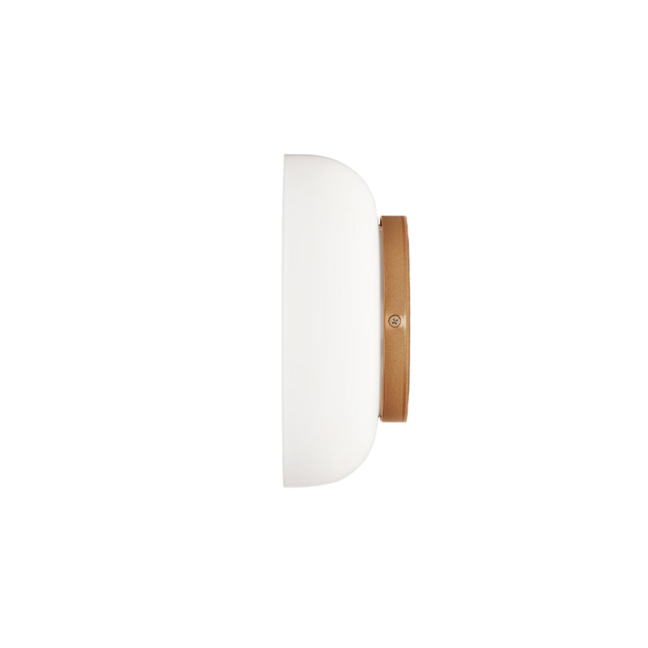 Blossi Wall + Ceiling Light: Opal