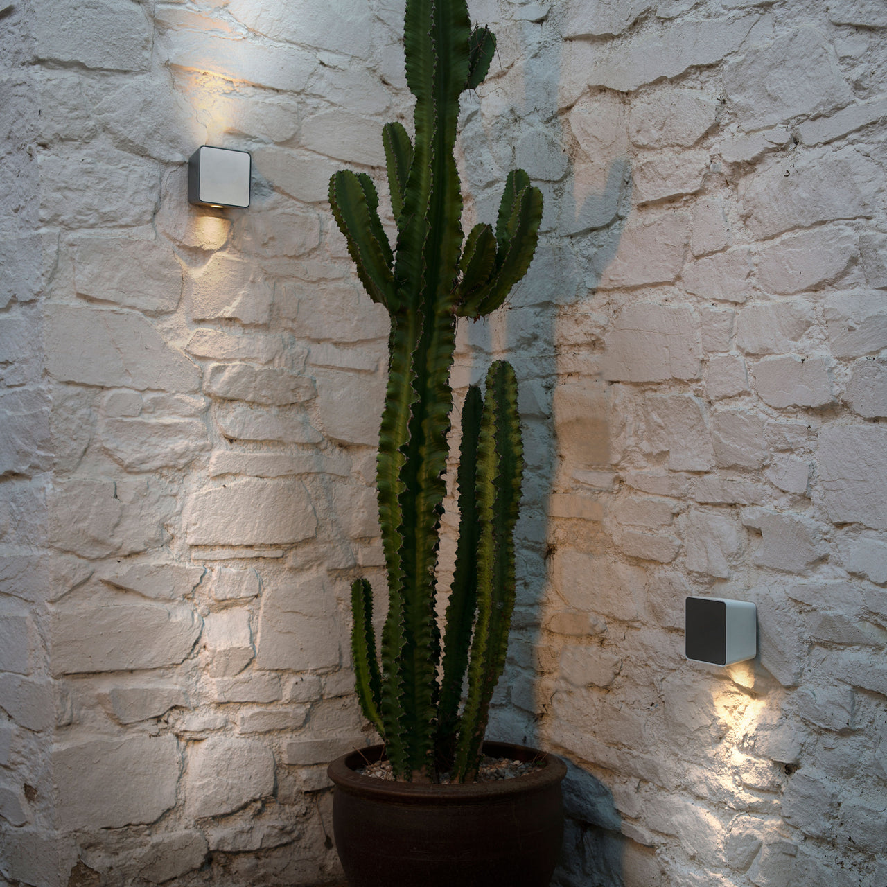 Lab Indoor/Outdoor Wall Light