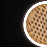 Mesh Space Wall/Ceiling Light
