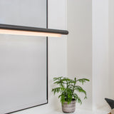 Pipeline CM3 Pendant Light