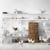 String System: Shelves (3-Pack)