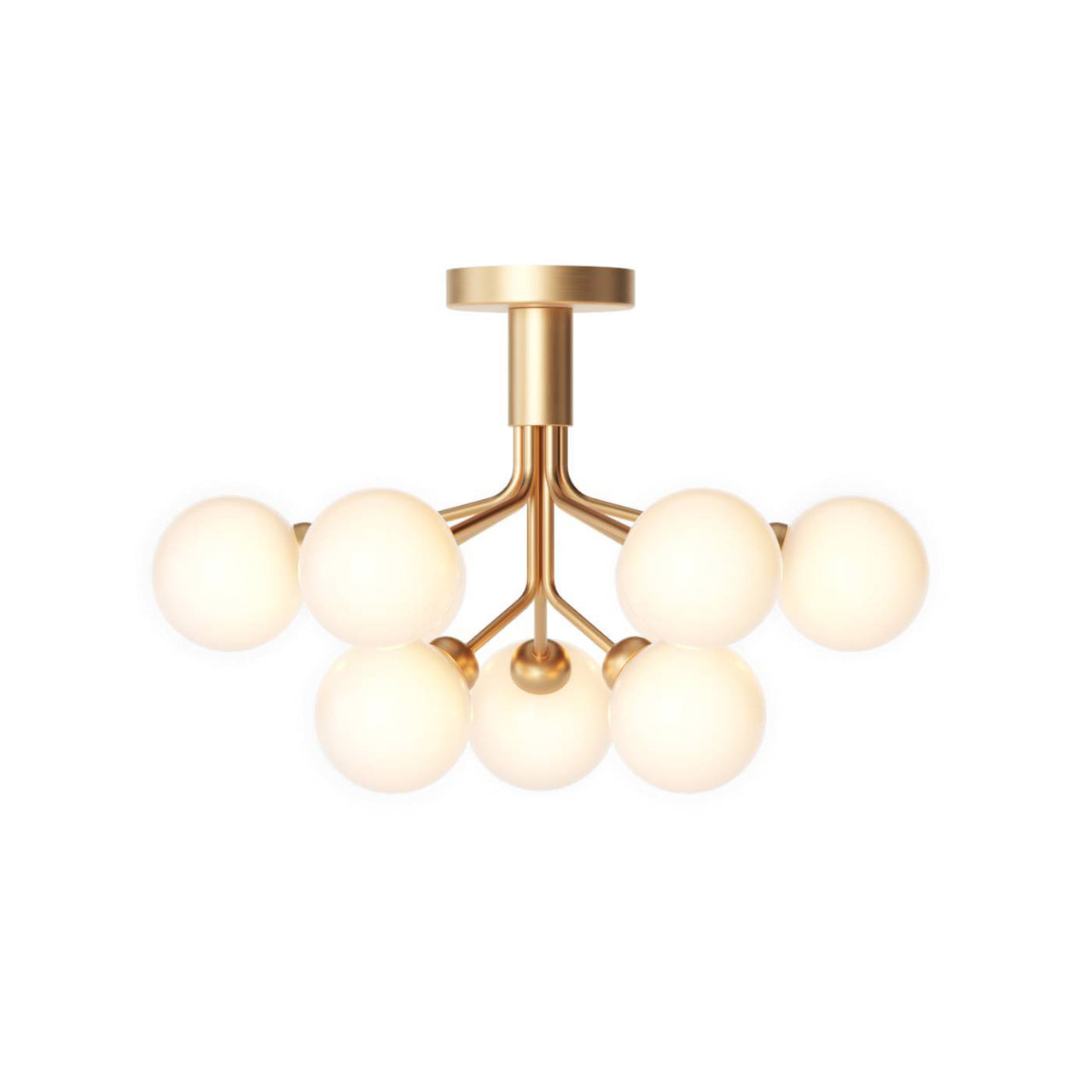 Apiales 9 Ceiling: Brushed Brass