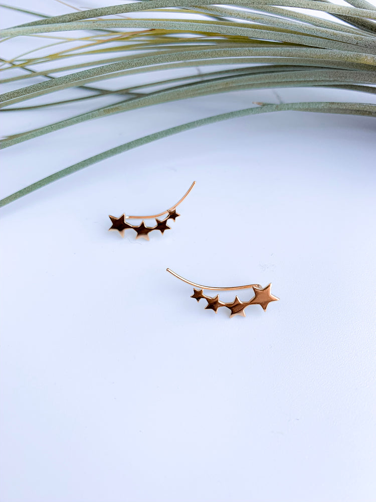 Santiago Star Climbing Earrings. Silver and Gold.