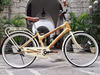 Vancouver Bamboo City & Seawall Cruiser Bike