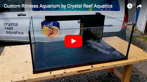 Custom Rimless Aquarium by Crystal Reef Aquatics -Video